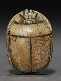 Image of a scarab - a sacred beetle in ancient Egypt
